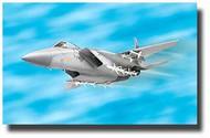 Revell USA  1/100 Easykit F-15 Eagle RMX1367