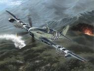 Special Hobby Kits  1/48 Collection - Fairey Firefly Mk.4/5 Korean War SHY48136