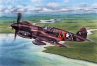 P-40E Warhawk Fighter #SHY72338