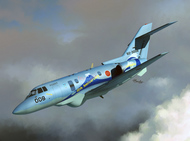 U-125 special edition of anniversary aircraft #SRT72127