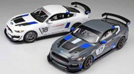 Ford Mustang GT4 Race Car #TAM24354