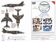 BAe Harrier GR.3 - wrap-around camouflage pattern paint mask #TNM48-M184
