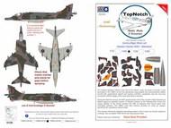 BAe Harrier GR.3 - standard camouflage pattern paint mask #TNM72-M183