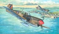 Curtiss P-40M Kitty Hawk Aircraft #TSM2211