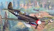 Curtiss P-40N Kitty Hawk Aircraft - Pre-Order Item #TSM2212