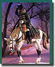 Verlinden Productions  1/6 Napoleon on Horseback Winter VPI1709