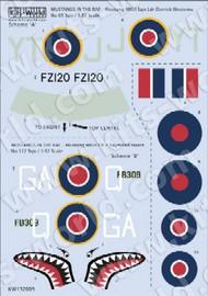 Warbird Decals  1/32 P-51 Mk III RAF Sq. Ldr. Derrick Westenra & Lt. Raymond Hearn WBS132009