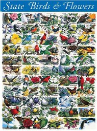 White Mountain Puzzles   N/A State Birds & Flowers Puzzle (1000pc) WMP140