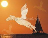 Wood 3-D Puzzles   N/A Artic Tern (Bird) Skeleton Puzzle (17'' Wingspan) WSKE24