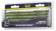 Peel n Place- Dark Green Edging Strips #WOO781