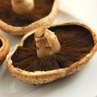 Portobello (Agaricus