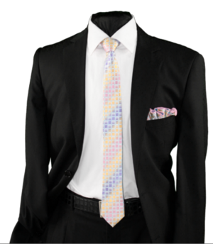 Skinny Tie and Hanky 19053 SKTH-19053