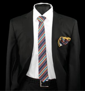 Skinny Tie and Hanky 19058 SKTH-19058