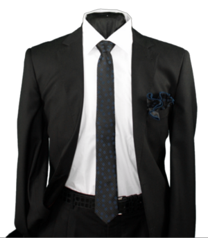 Skinny Tie and Hanky 19061 SKTH-19061