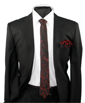 Skinny Tie and Hanky 19074 SKTH-19074