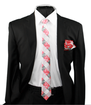 Skinny Tie and Hanky 19075 SKTH-19075