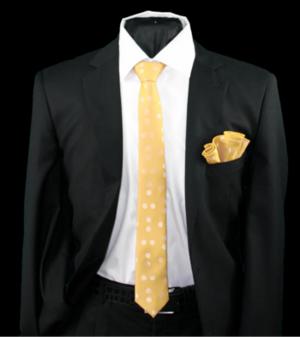 Skinny Tie and Hanky 19079 SKTH-19079