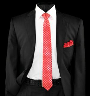 Skinny Tie and Hanky 19080 SKTH-19080