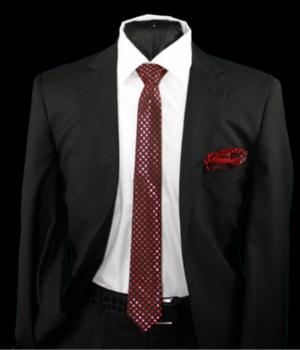Skinny Tie and Hanky 19082 SKTH-19082