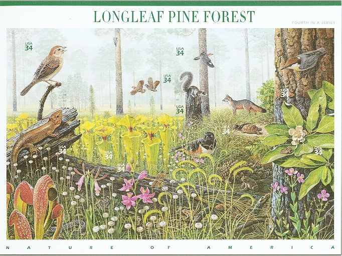 3611 34c Pine Forest F-VF Mint NH Self Adhesive Pane of 10 #3611sh