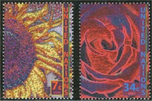 UNNY 803-4   7c 34c Definitives Mint NH Inscription Blocks #ny803mi