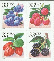 3294-97 33c Fruit Berries F-VF Mint NH Att'd Block of 9 3294-7nhb9