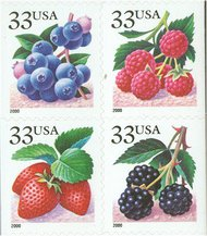 3294a-7a 33c Fruit Berries (2000) F-VF Mint NH 3294a-mnh