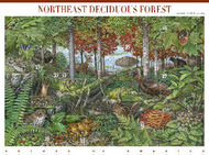 3899 37c Deciduous Forest F-VF Mint NH Sheet of 10 3899sh