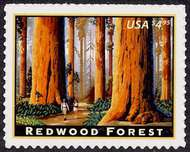 4378 $4.95 Redwood Forest F-VF Mint NH 4378nh