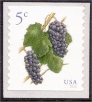 5038 5c Pinot Noir Grapes, Coil Used Single 5038used