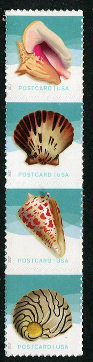 5163-66 Postcard Rate Seashells set of 4 Used Singles 5163-6used