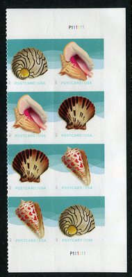 5163-66 Postcard Rate Seashells Plate Block of 8 5163-6pb8