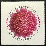 5460 Global Forever Chrysanthemum Mint Single 5406nh