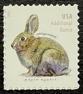 5544 20c Brush Rabbit Mint  Single 5544nh