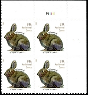 5544 20c Brush Rabbit Mint Plate Block of 4 5544pb