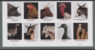 5583-92 Forever Heritage Breeds Mint  Plate Block of 10 5583-92pb10