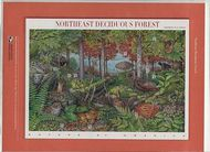 3899 37c Northeast Deciduous Forest Commemorative Panel CAT 732 CP732