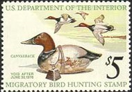 RW42 1975 Duck Stamp $5 Decoy & Ducks F-VF Mint NH rw42nh