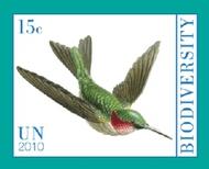 UNNY 1017-8 15c, $1.50 Year of Biodiversity  Inscription Blocks unny1017mi