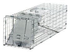 Havahart 1078 Cage Trap  #1078