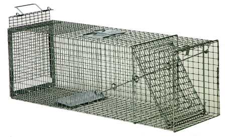 Safeguard® Professional Rear Release Cage Trap #54124PRR