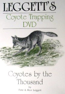 Coyotes by the Thousand DVD by Pete and Ron Leggett #leggettdvd02