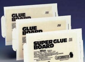 Catchmaster Rat Glue Board 60RBGL