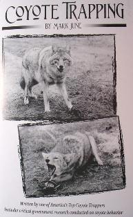 Coyote Trapping Book by Mark June #coytrapbyMJ
