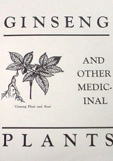 Ginseng and Other Medicinal Plants by A.R. Harding 576