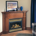 Direct Vent Gas Fireplace (BGD33) BGD33