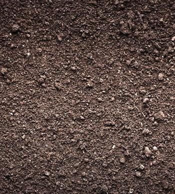 Northern's NO FREEZE Dirt - 20lb. Trap Bedding #nfd27304