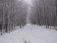 PA. Winter Trapline