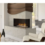 City Series Direct Vent Gas Fireplace (CC40RE - NG/LP) CC40RE