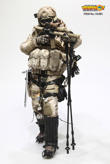 "Very Hot 1/6 Scale 12"" US Navy Seal Polar Mountain Striker Set DCU Version 1038S #VH-1038S"